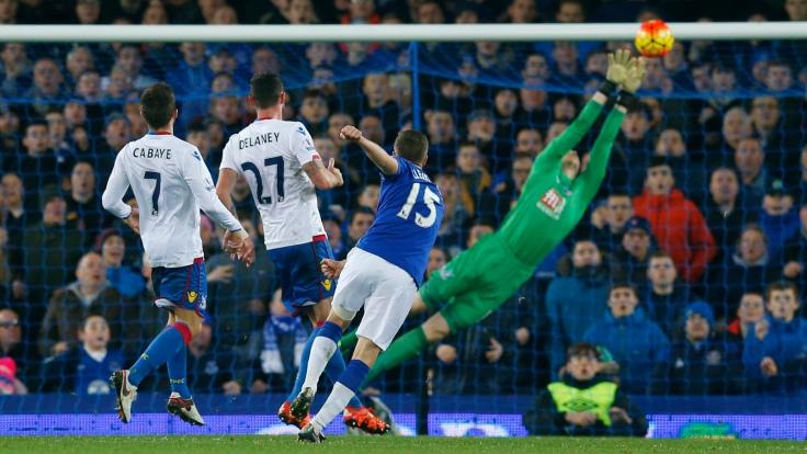 Everton v Crystal Palace - Barclays Premier League